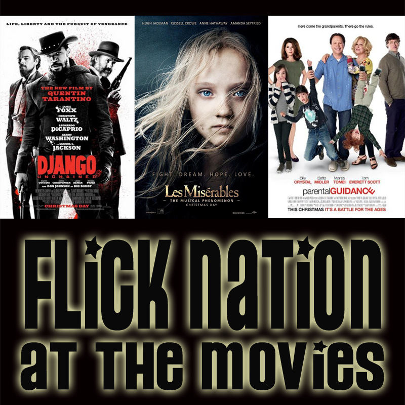 Flick Nation: At the Movies – 12/25/12